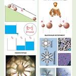 Орлов В.А., Кабардин О.Ф. Полный комплект цветных таблиц по физике. Механика. Кинематика. Динамика